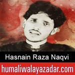 https://humaliwalaazadar.blogspot.com/2019/08/hasnain-raza-naqvi-nohay-2020.html