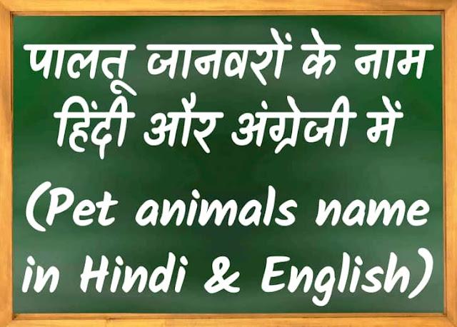 Pet Animals name in Hindi and English