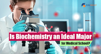 Is Biochemistry an Ideal Major for Medical School?