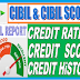 WHAT IS CIBIL, WHAT IS CIBIL SCORE, CREDIT SCORE, HOW TO CHECK CIBIL SCORE CREDIT SCORE FREE
