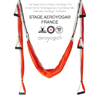 yoga aerien, aero yoga, aeroyoga france, aero yoga paris, air yoga, air pilates, apesanteur, hamac yoga, pilates, yoga, quebeq, balançoire, formation, enseignants