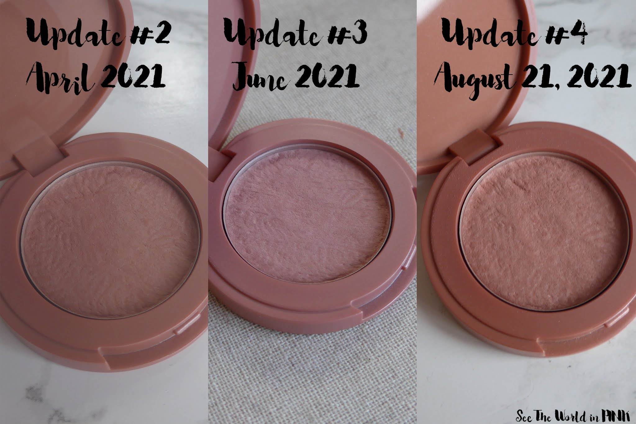 Project Pan 21 in 2021 ~ Update #4