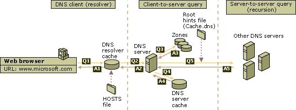 Fungsi Layanan Jaringan Dan Pengenalan Dhcp, Dns, Ftp, Ntp ...
