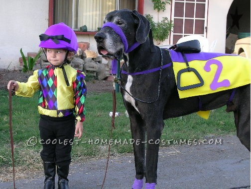 Dress a young child up as a jockey and your great dane as the horse and you've got a great Halloween costume combo!