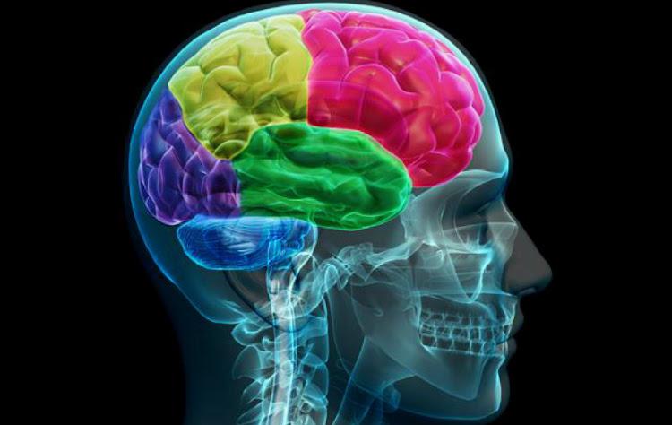 Procesos Cognitivos y Metacognitivos