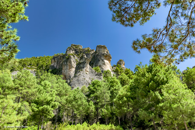 Árboles y Rocas, paisajes de Matarraña