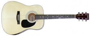 dan guitar Suzuki SDG 6PK