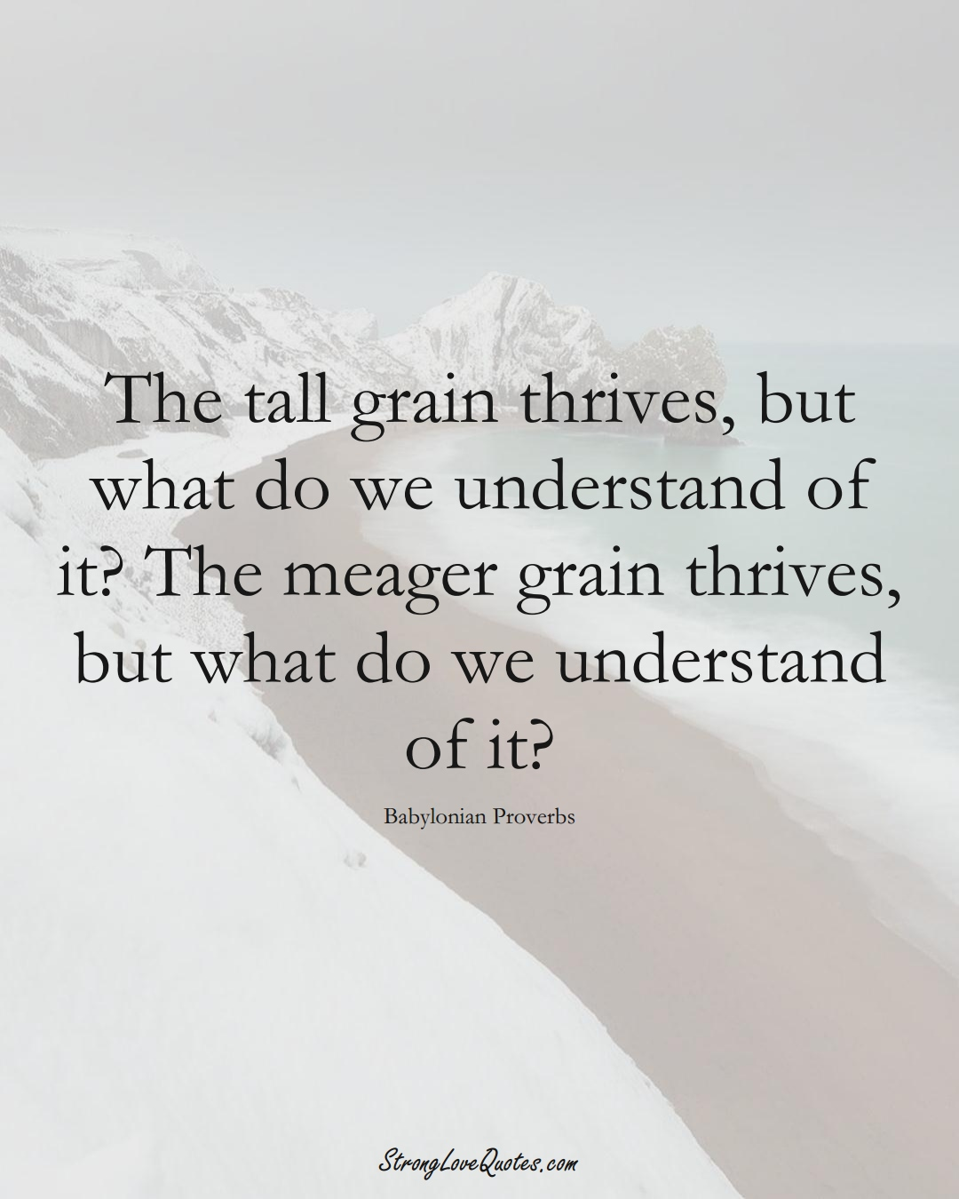 The tall grain thrives, but what do we understand of it? The meager grain thrives, but what do we understand of it? (Babylonian Sayings);  #aVarietyofCulturesSayings