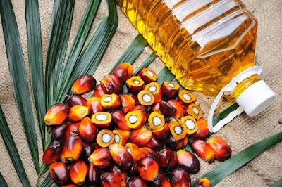 Palm oil useful in boosting immune response