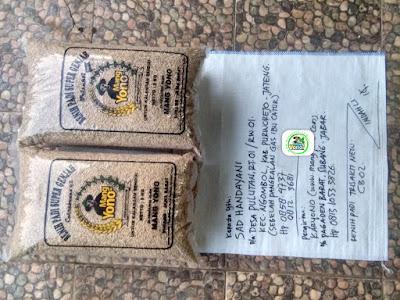 Benih padi yang dibeli SAD HANDAYANI Purworejo, Jateng. (Sebelum packing karung ).