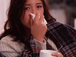 Cây thuốc trị bệnh cúm
