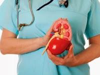Penyakit Gagal Ginjal Akut, Gejala, Penyebab dan Pencegahan