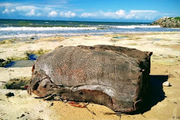 Mysterious crates washing up on Brazil's oil-stained beaches