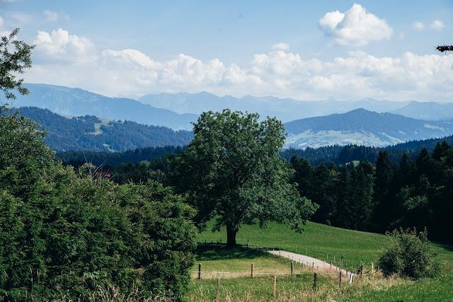 Wandertrilogie Allgäu  Etappe 38 Weiler-Scheidegg-Lindenberg  Wasserläufer Route 01