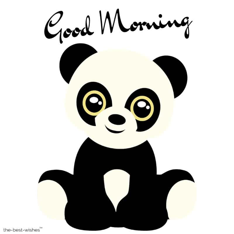 good morning panda image