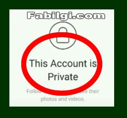 Instagram Gizli Profil ve Hikayeleri Görme Uygulaması Scout.Apk Nisan 2020