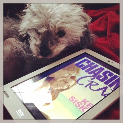 A fuzzy grey poodle, Murchie, lays alongside a white Kobo with Chasing Crazy's cover on its screen. The cover features a redheaded white girl and a brunette white boy sitting spooned on a beach.