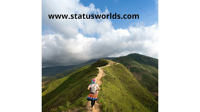 Travel Status and Quotes