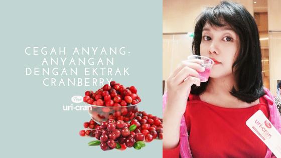 ekstrak cranberry cegah anyang-anyangan