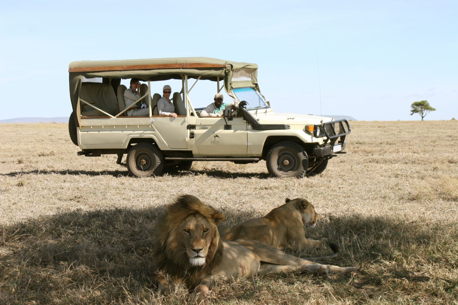 Travel deals african safari / Sodexho coupons outlets in