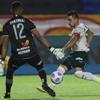 www.seuguara.com.br/Palmeiras/Copa do Brasil/