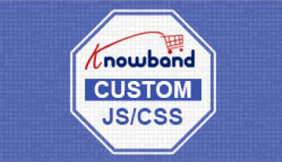 PrestaShop Custom CSS and JS Module | Knowband