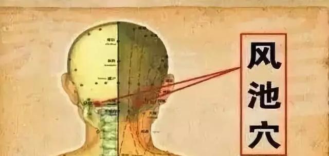 若疼痛發生在頭兩側,即耳朵上部,就在膽經按摩,例如膽經的風池穴、陽陵泉穴等均可。