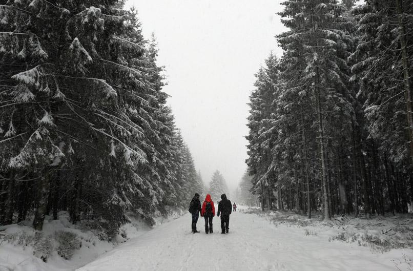 Sneeuw in de Hoge Venen