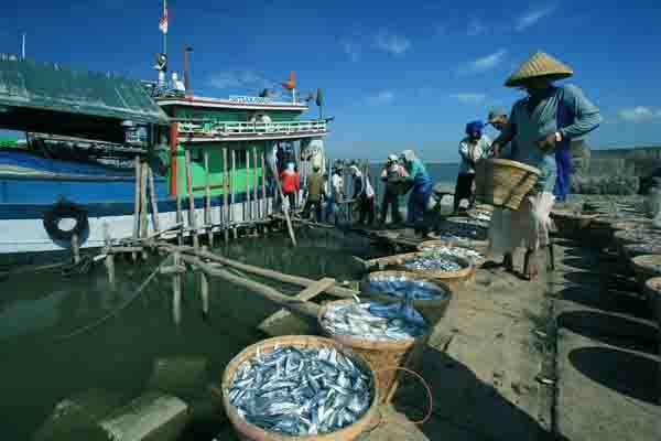 Keuntungan dan Kerugian Pelabuhan Laut
