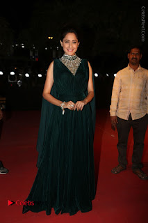 Actress Pragya Jaiswal Stills in Green Long Dress at Gemini TV Puraskaralu 2016 Event  0087.JPG