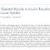 Papel do músculo esquelético na resistência à insulina e captação de glicose.