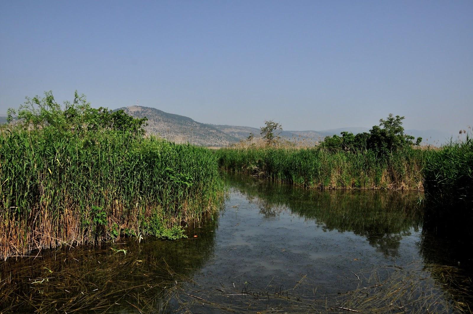 Izrael - Park Narodowy Doliny Hula