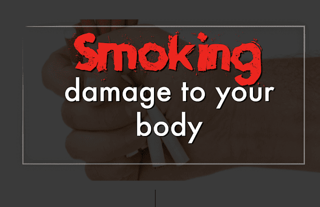 The effect of smoking on the central nervous system