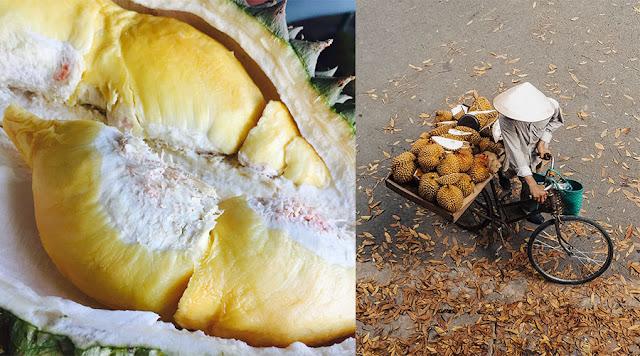 Tips Dan Cara Pilih Durian Masak Dengan Betul