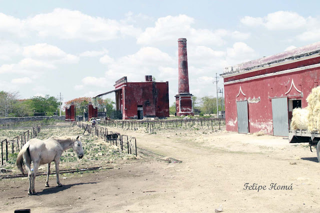 Las Haciendas Henequeneras en Yucatán