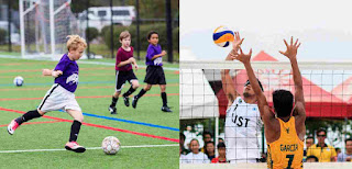 Sepak bola dan bola voli