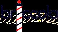 http://www.rosariadecaro.com/2015/06/save-date-briccola-fashion-party.html