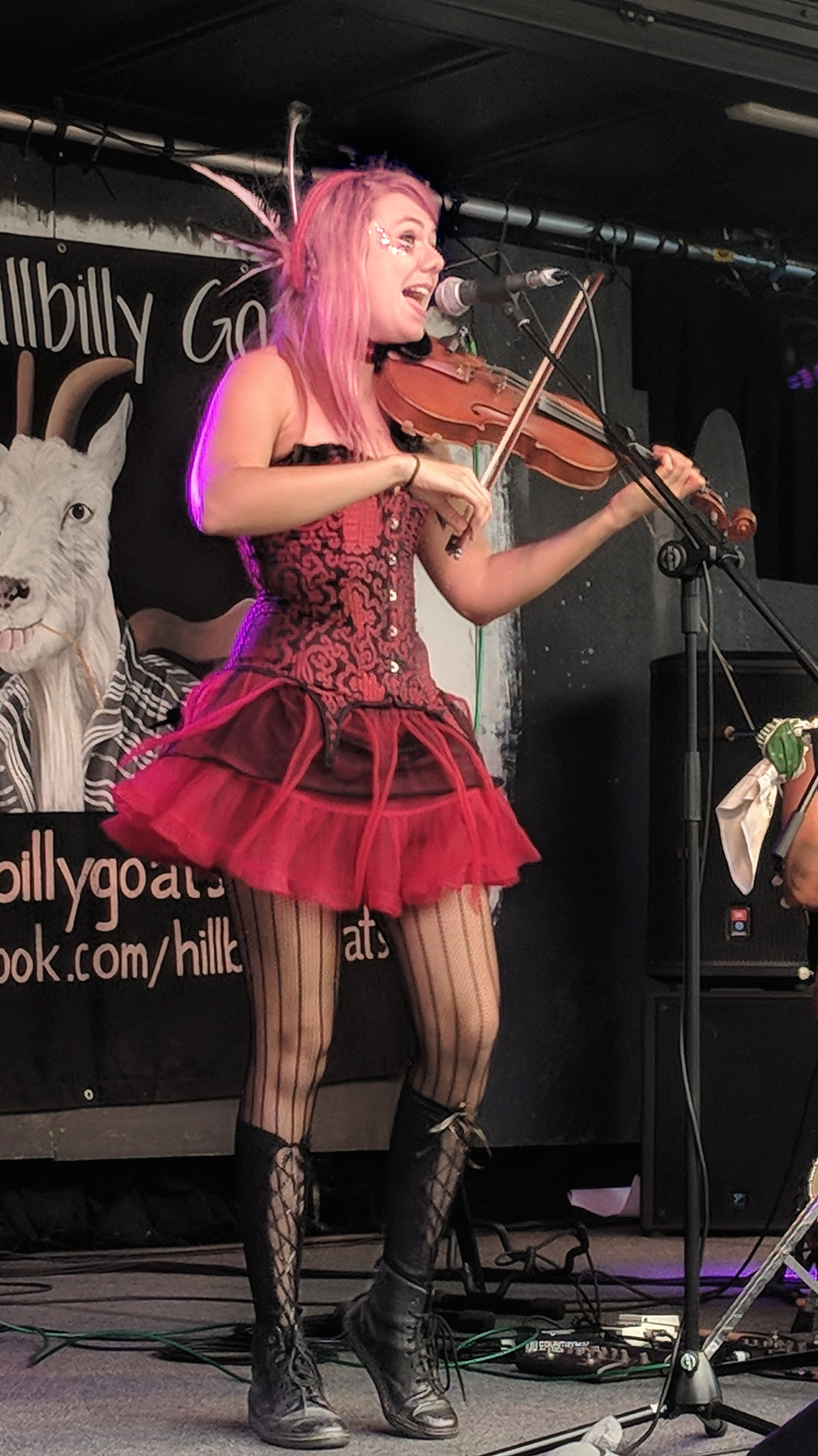 The fiddle player of The Hillybilly Goats
