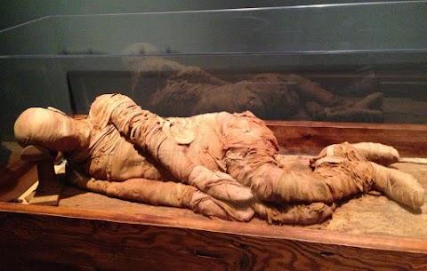 Mumifikálódott holttestet találtak egy kaposvári építkezésen