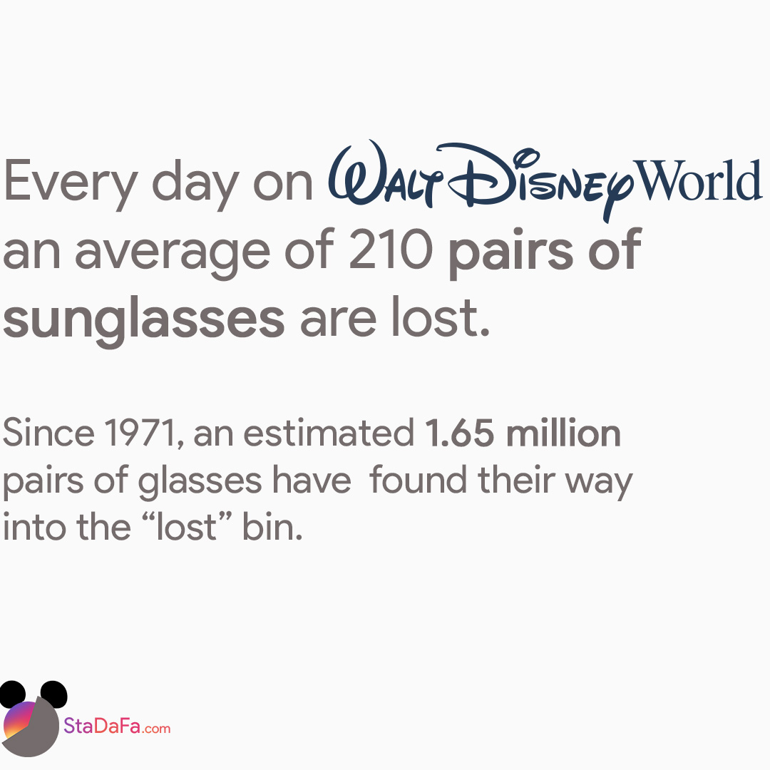 Every day on Walt Disney World, an average of 210 pairs of sunglasses are lost