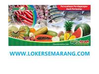 Lowongan Kerja Sleman, DIY Terbaru Agustus 2020 di Agro Buah dan Pasar Olshop Yogyakarta