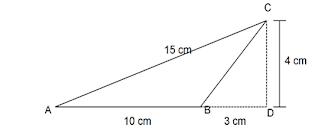 contoh soal luas segitiga