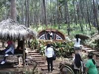 Baru! Wisata Unik 5 Rumah Hobbit yang Mungil dan Instagrammable