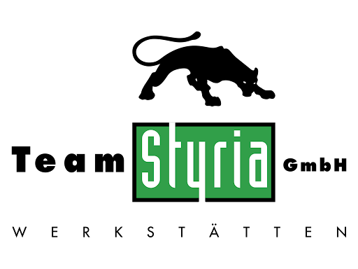 Team Styria GmbH