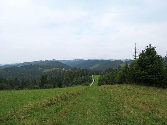 Przed nami Przełęcz Knurowska.