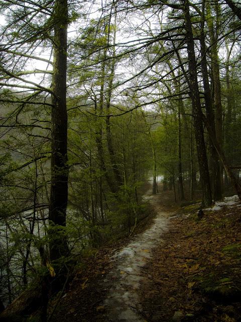 Zoar Scenic Trail, Paugussett State Forest, Newtown CT