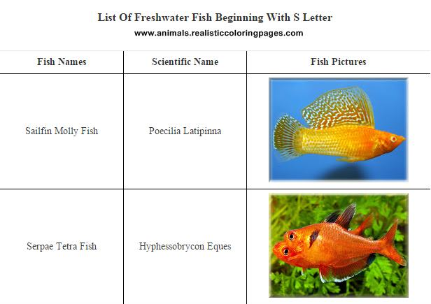 List of freshwater fish beginning with S