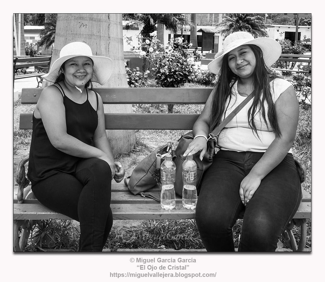 Antioquía (Perú).- Pamelas y flores.