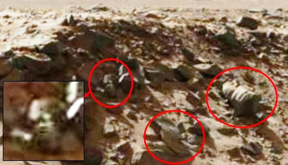 mars anomaly | Strange Ring Of Rocks On Mars! - Mars ... |Mars Unexplained Anomalies