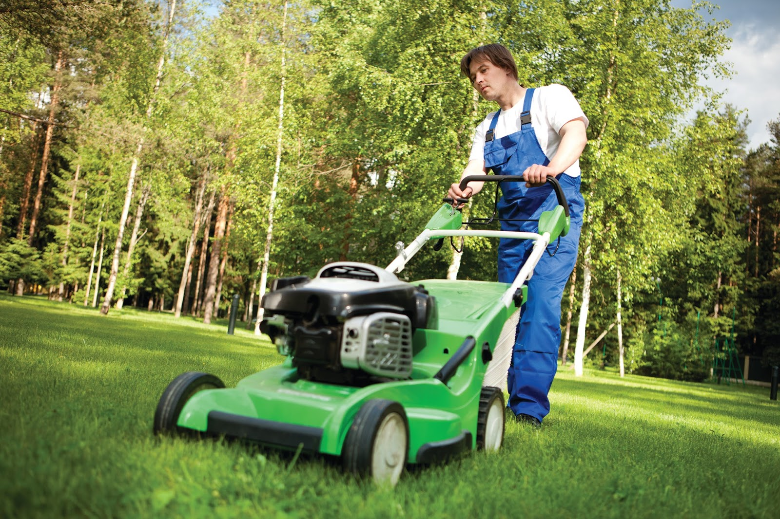 Jerry baker 39 s what 39 s growin 39 on for Lawn mowing and garden maintenance